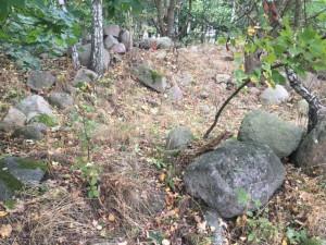 Abseits des Weges: Steine am Gamengrund in Leuenberg
