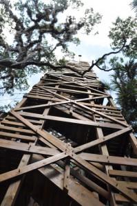 Myakka River State Park - Baumwipfelpfad und Aussichtsturm