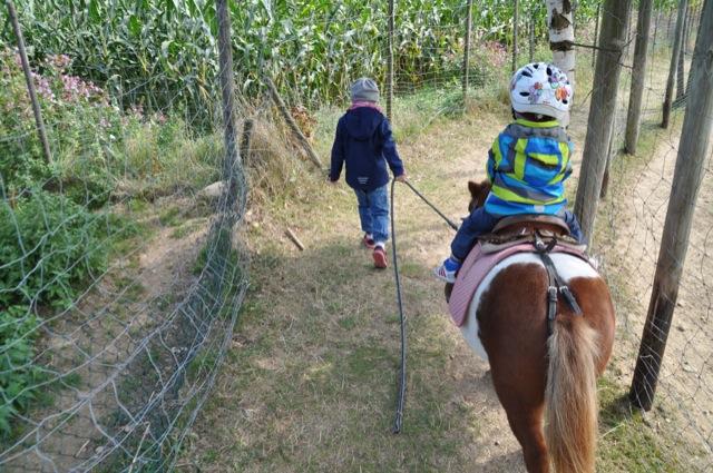Ponnyreiten für Kinder im Wildpark Sonnenhalde