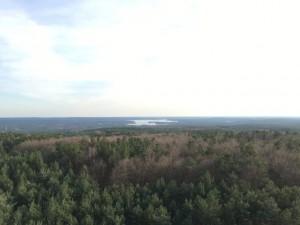 Ausblick vom Aussichtsturm in den Rauner Bergen auf den Scharmützelsee