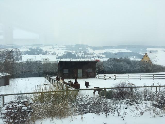 Aussicht der Frankenfarm (leider bei schlechtem Wetter)