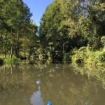 Ein Eltern-Wochenende im Spreewald (ohne Kinder!)