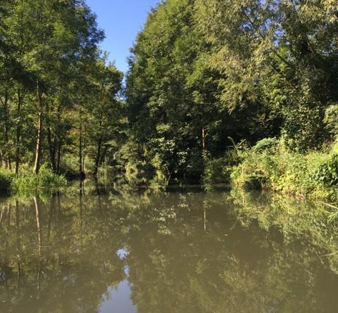 Mit Kajak oder Kanu - Rundfahrt im Spreewald