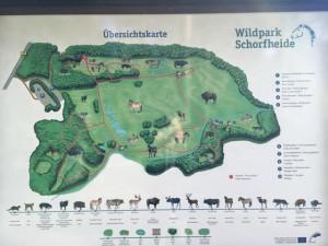 Lageplan - Karte vom Wildtierpark Schorfheide