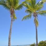 Reisebericht Rundreise Florida mit Kind