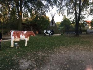 Innenhof der Ranch