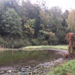 Wanderung rund um den Röth-See im Gamengrund in Leuenberg