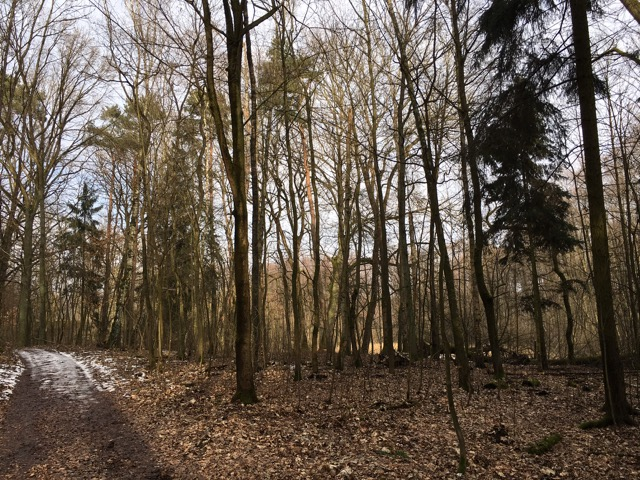 Wanderung Schlosspark Garzau