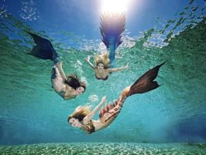 Unterwasserbalett - Meerjungfrauen im Weeki Wachee