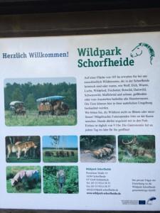 Willkommen im Wildtierpark Schorfheide